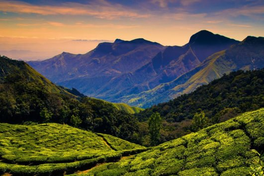 Hill Station Packages